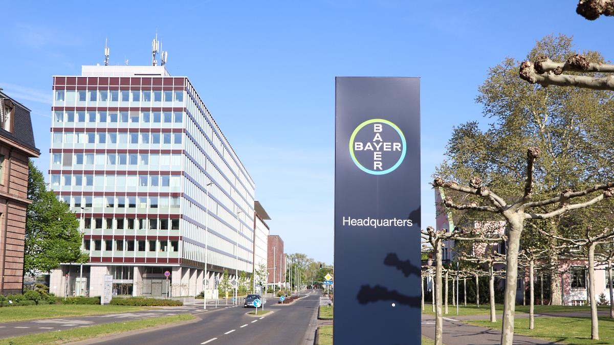 Bayer Aktien News
