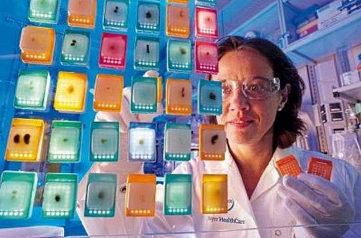 Der Bayer-Konzern muss nachverhandeln: Monsanto hat die Übernahmeofferte zwar abgelehnt, sich aber gesprächsbereit gezeigt. Bild und Copyright: Bayer.